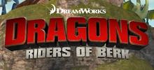 Die Drachenreiter von Berk